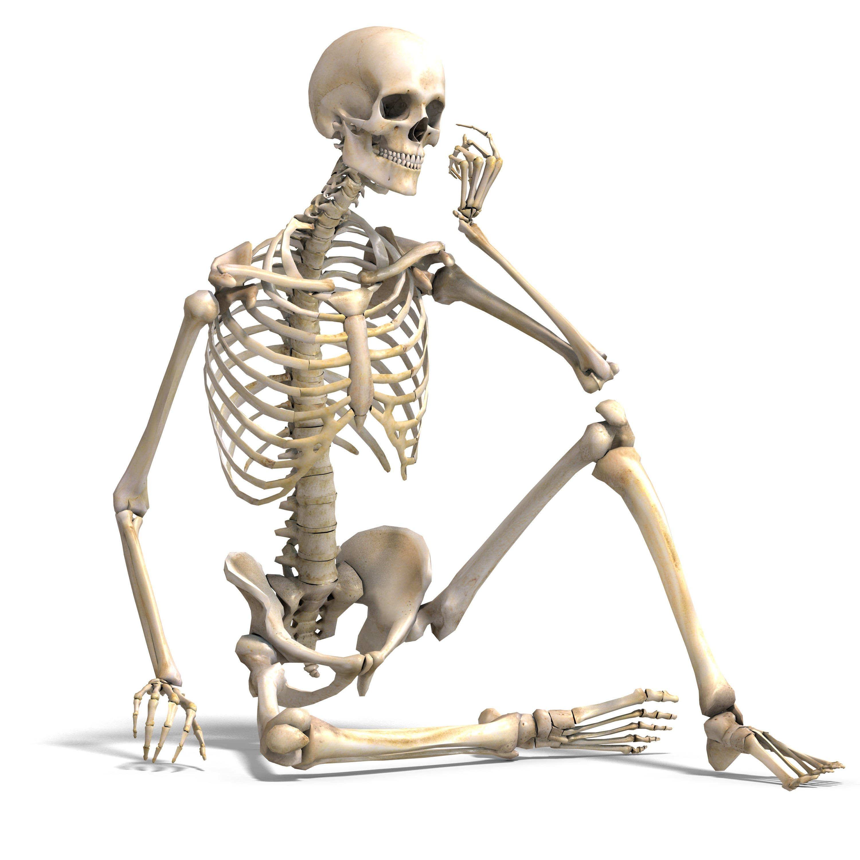 hormonok hatása a csontokra