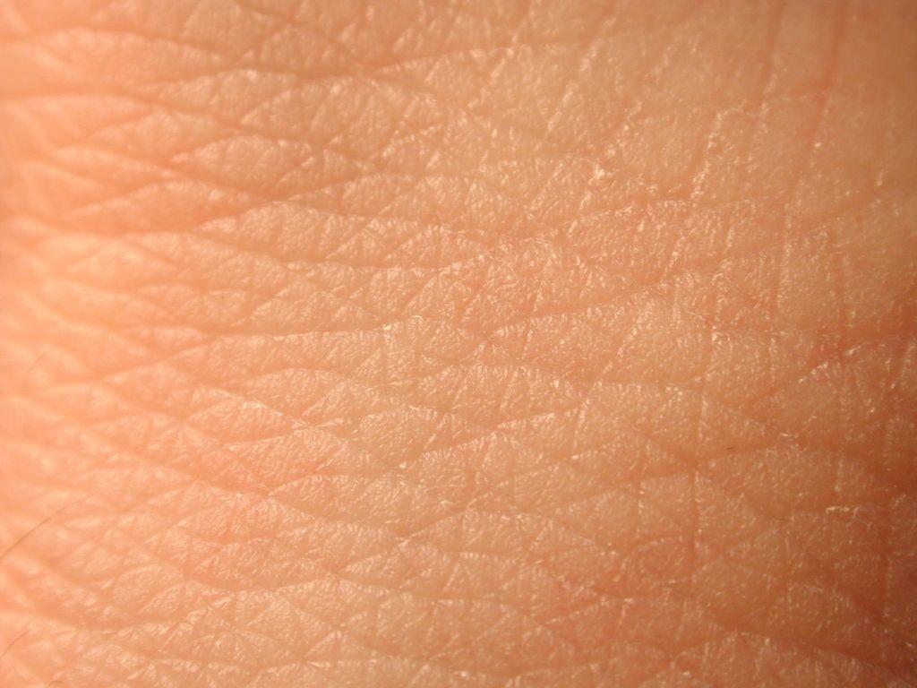 hormonok. a képen egy bőrfelület látható