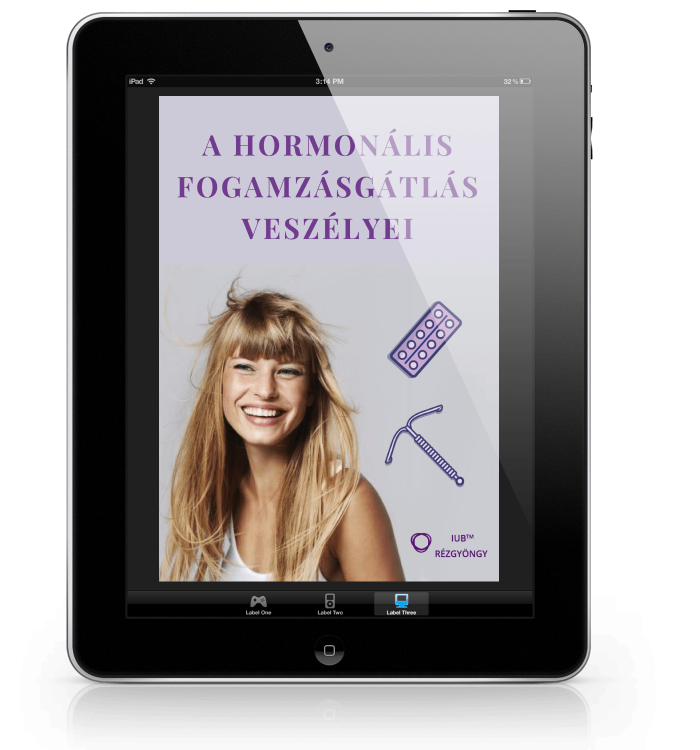 ebook_cover_ipad